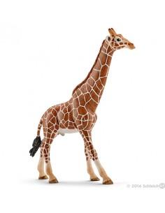 Schleich Wild Life 14749 children toy figure Schleich 14749 - 1