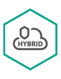 Kaspersky Lab Hybrid Cloud Security for Server Uusiminen Kaspersky KL4255XARFR - 1