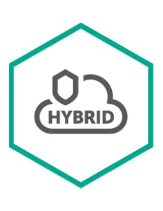 Kaspersky Lab Hybrid Cloud Security Uusiminen Kaspersky KL4554XADDQ - 1