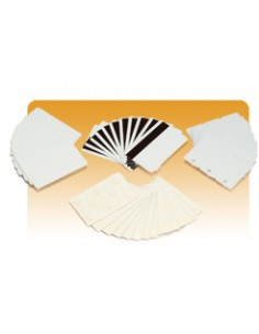 Zebra PVC Card, 30 mil business card 500 pc(s) Zebra 104523-130 - 1