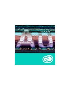 Adobe Vip Gov Auditioncc Mlp 12m Rnw(ml) Adobe 65227536BC02A12 - 1