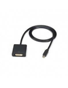 Black Box Mini DisplayPort - DVI, 10-ft 3 m Musta Black Box ENVMDPDVI-0010-MF - 1