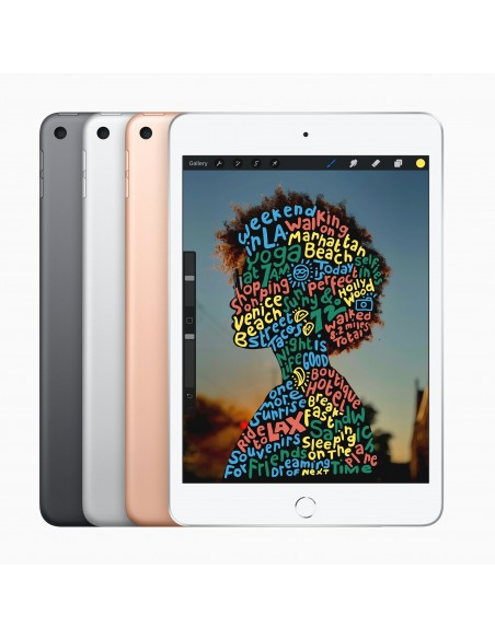 apple-ipad-mini1-4g-lte-256-gb-20-1-cm-7-9-wi-fi-5-802-11ac-ios-12-silver-4.jpg