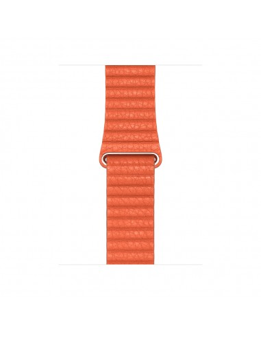 apple-mv602zm-a-watch-part-accessory-klockarmband-1.jpg