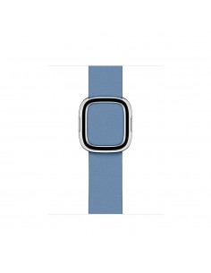 apple-40mm-cornflower-modern-buckle-large-1.jpg