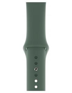 apple-mwuv2zm-a-tillbehor-till-smarta-armbandsur-band-gron-fluoroelastomer-1.jpg