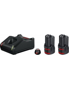 Bosch 1 600 A01 9R8 cordless tool Battery / charger & set Bosch 1600A019R8 - 1