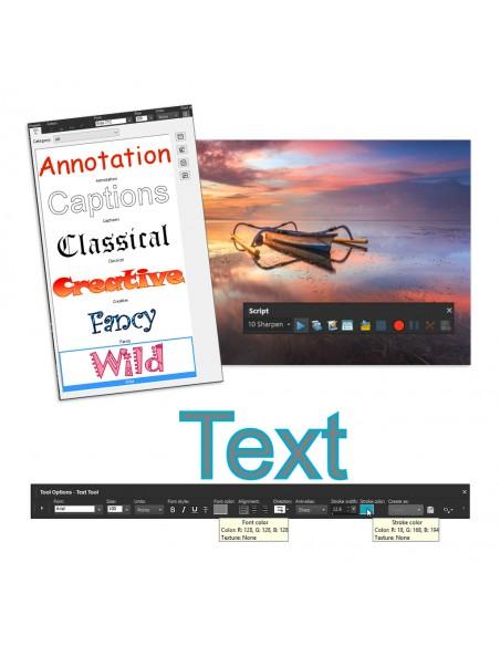 Corel PaintShop Pro X9 Education Edition License (1-4) Saksa, Hollanti, Englanti, Espanja, Ranska, Italia Corel LCPSPX9MLA1 - 6