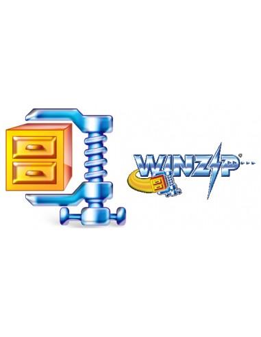 Corel WinZip 15 Standard, 500-999U, EN Corel LCWZ15STDENG - 1