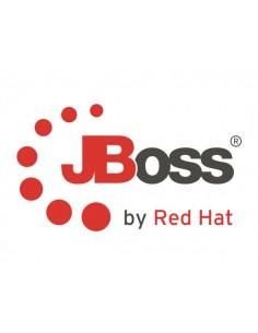 Red Hat JBoss Data Virtualization Red Hat MW00142F3 - 1